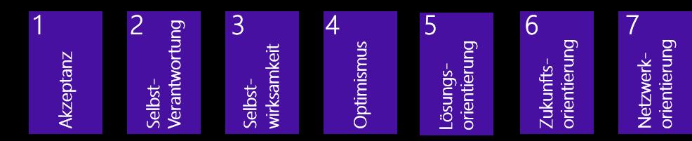 Grafik Säulen Resilienz